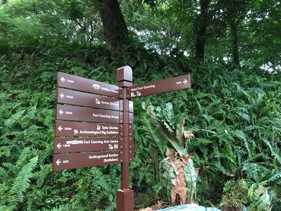 Hotel Fort Canning: Lots of options on running path