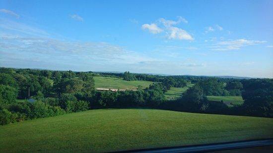 Little Horsted, UK: DSC_5070_large.jpg
