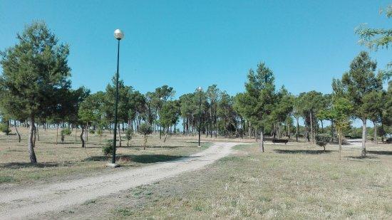 Parque La Pulgosa