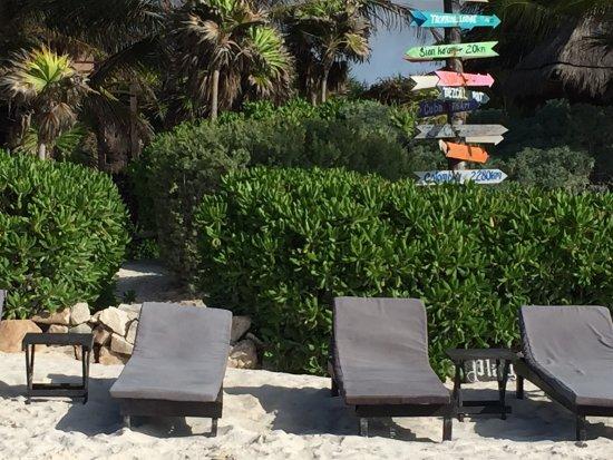 Playa Esperanza: photo6.jpg