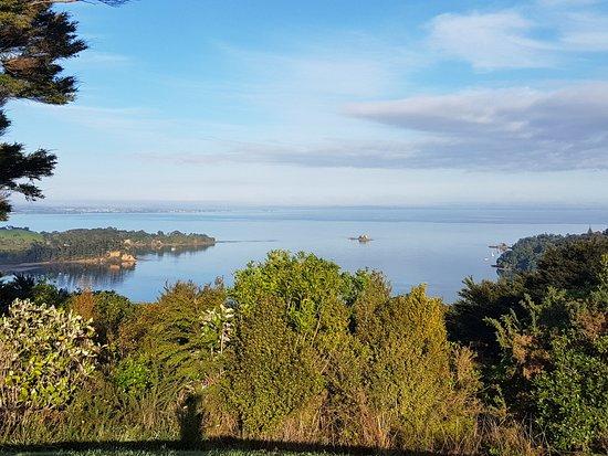 Waiheke-øya, New Zealand: Walking in Whakanewha Regional Park