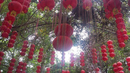 Shenzhen Guanlan Landscape Grange : 20170530_110416_large.jpg