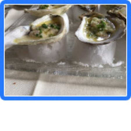 Lucca Back Bay : Oysters resting on a cake of oyster saltSc