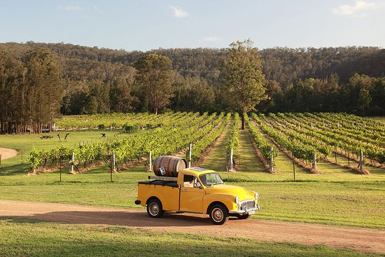 Visit Wollombi Wines in the Hunter Valley - friendly hosts!