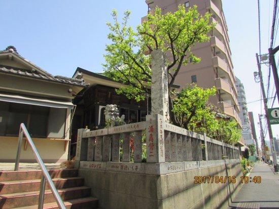 Fuyuki Bentendo