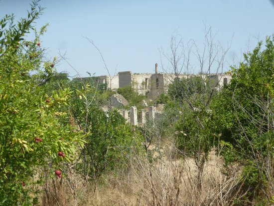Nagorny Karabakh, Azerbejdżan: Some small wild pomegranate trees can be found among the ruins
