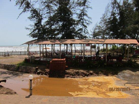 Beach Resort Igloo House Updated 2017 Ranch Reviews Dapoli India Tripadvisor