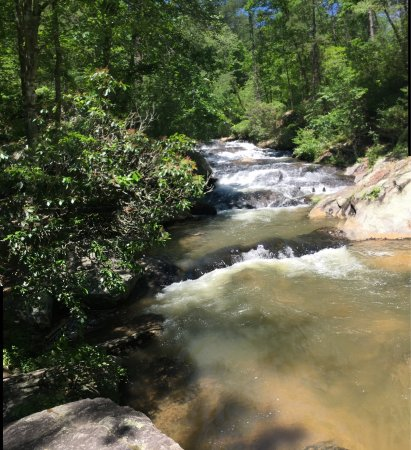 Chattahoochee National Forest: photo8.jpg