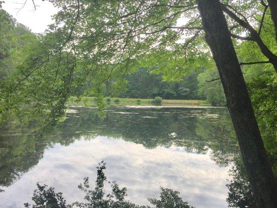 Marietta, GA: Sublet Pond