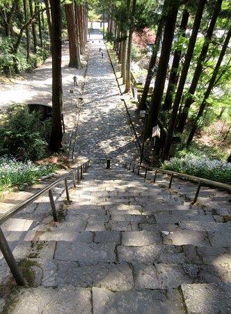 Mt. Minobu Kuonji Temple : 菩提梯から振り返ってみた石畳の参道。