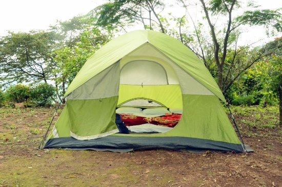 tent camping in munnar picture of kolukkumalai tea estate
