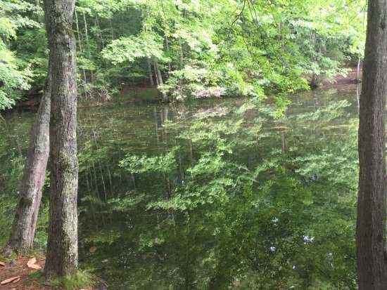 Marietta, GA: Sibley Pond trail