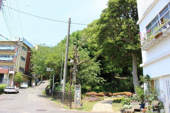 Ito Park