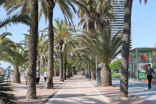 Hotel 4 Barcelona: Plage village olympique