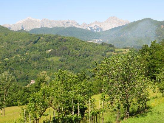 Pieve Fosciana, Italien: View from my chalet
