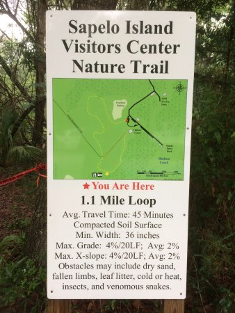Darien, GA: Nature trail, but it was closed when we visited