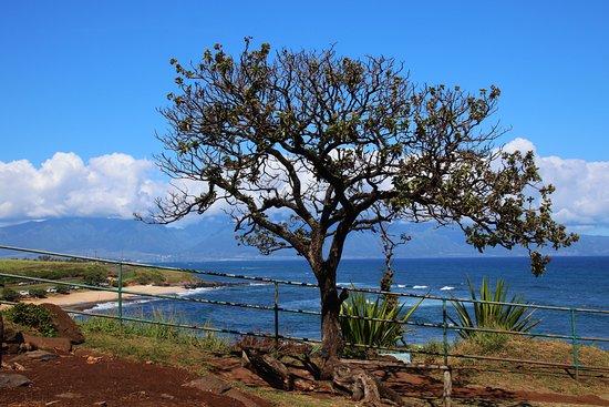Paia, Hawaï: Ausblick