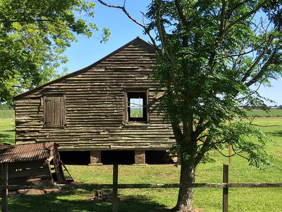 Tours By Isabelle: Slave Cabins At Laura   The Story Of Slavery At Laura Is