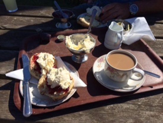 Kelling, UK: early morning Coffee with Scone, Jam and Cream