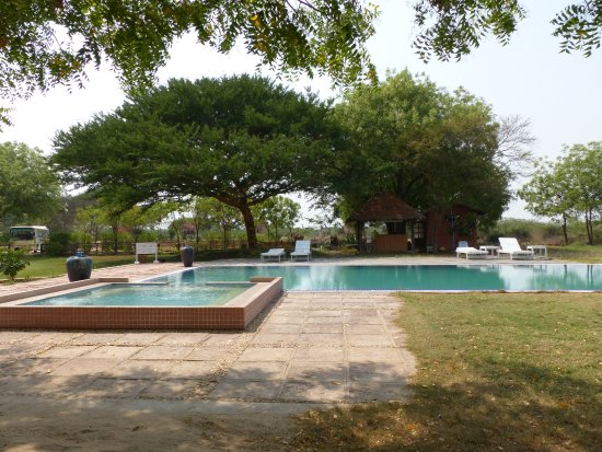 La superbe piscine picture of kumudara hotel bagan for La piscine review
