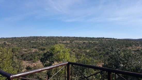 Nungubane Game Lodge: IMG-20170527-WA0003_large.jpg