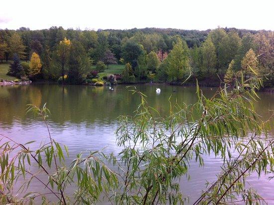 Le Jardin du Bois Marquis