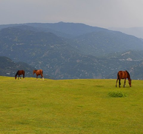 Azad Kashmir Photo