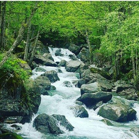 Kruje, Albania: Parku Kombetar i Qafe Shtames