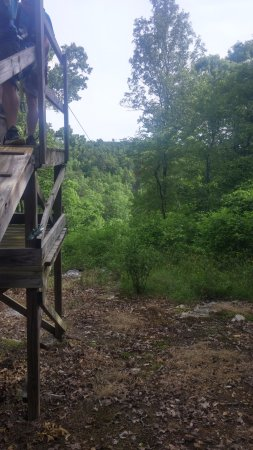 Zip Lines at Ouachita Bend: view