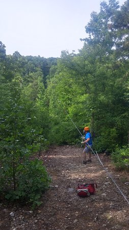 Zip Lines at Ouachita Bend: incoming