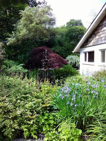 St Austell, UK: array of shrubs and tree's