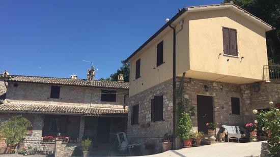 The view from the apartments are beautiful - Foto di La Terrazza ...