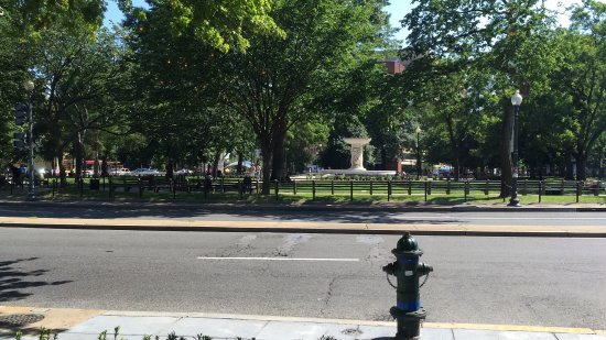 The Dupont Circle: photo0.jpg