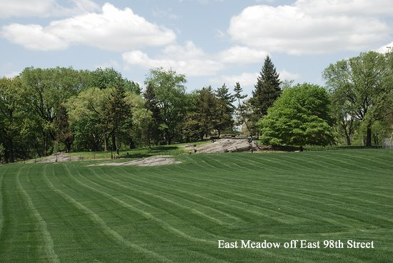 East meadow central park