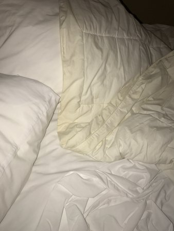 Comfort Inn Conference Center: Shabby Bed sheets