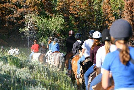Trinity Center, Kalifornien: Ranch Resort Horseback Nature Rides