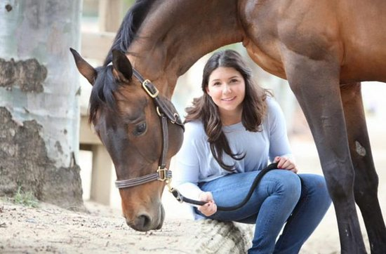 Trinity Center, Kaliforniya: Ranch Resort Horses