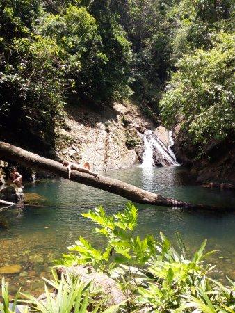 Panama Province لوحة
