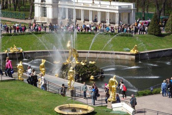 MaxiBaltTours: Peterhof grounds