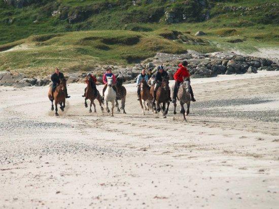 Loughrea, Ierland: Cantering on the beach
