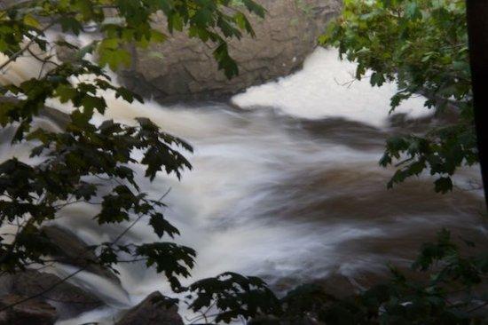 Waterfalls of Hamilton: Darnley Cascades #2