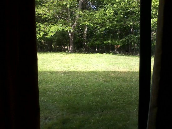 Niantic, CT: From room 154