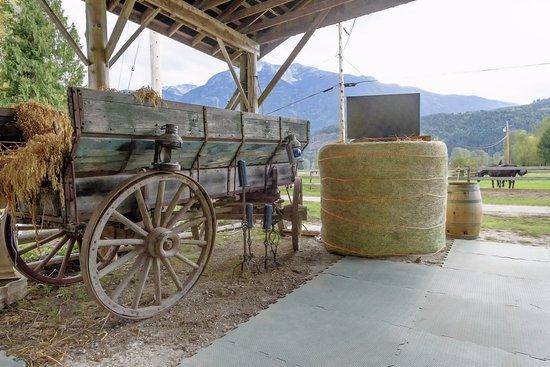 Pemberton, Canadá: Agricultural antiques throughout farm