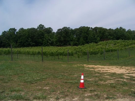 Prince Frederick, MD: View from parking lot, walking up to the wine/beer tasting