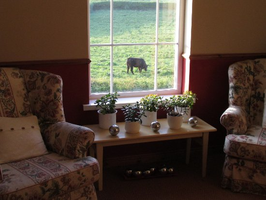 Redbrick Country Guesthouse: View from upstairs landing, outside the bedrooms