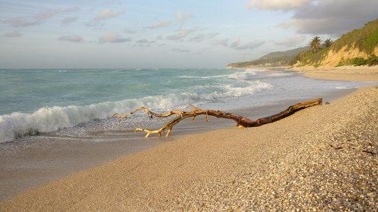 Paraiso, Dominican Republic: The beach nearby - a short walk