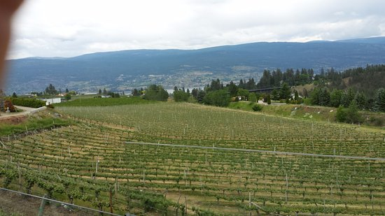 Summerland, Canada: View from the deck of Dirty Laundry Winery.