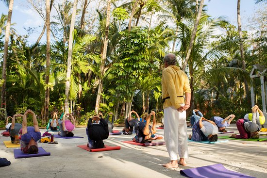 Sivananda Ashram Yoga Retreat: Class on the Tennis Court