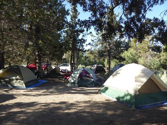Fawnskin, CA: serrano