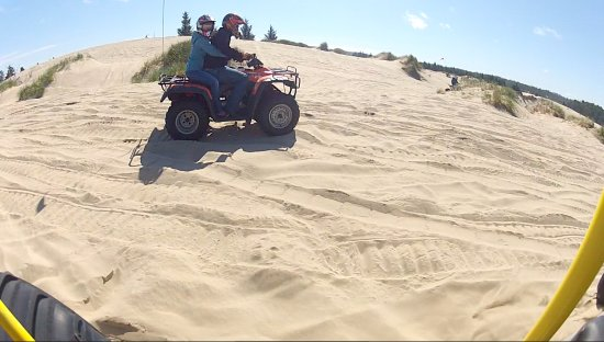 Florence, OR: Other atv riders are all over the dunes.